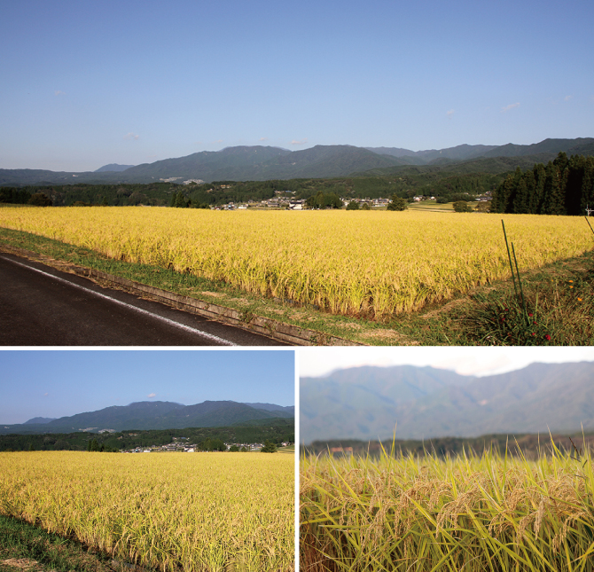 心癒される田園風景
