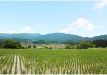 日本一の農村景観